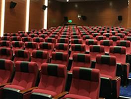广州索菲亚总部礼堂椅制作