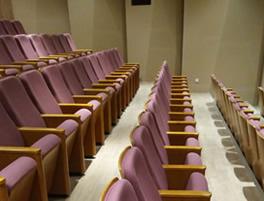 广州琶洲某知名企业会议厅礼堂椅定制